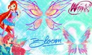 Winx Bloom s season 6 wings by winxclubstellastar-d6waxd2