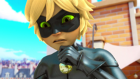 Animan - Cat Noir 01