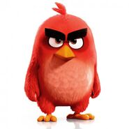 Redbird2016