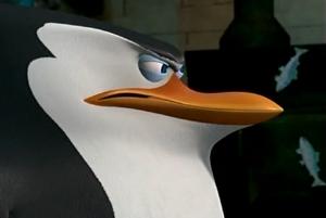 Skipper face the Hans