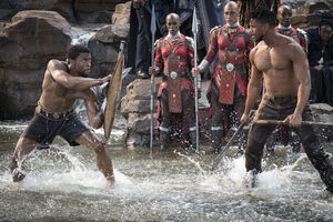 T'Challa-vs-Killmonger