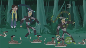 Aviva and Kratt Bros pass a field of Rattlesnakes