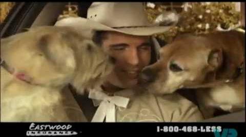 Eastwood Insurance Cowboy with dogs in a car commercial