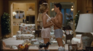 Chances Are Alex Finch (Robert Downey Jr) and Corinne Jeffries (Cybill Shepherd) after she knows that Alex is Louie