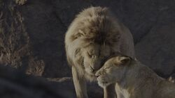 Lion King 2019 Screenshot 0116