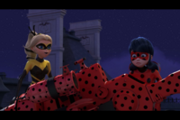 Queen Bee and Ladybug in night