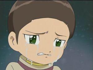 Iori Cry