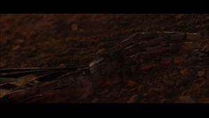 Darth Vader limb