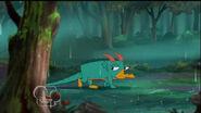 Perry el Dragónorrinco