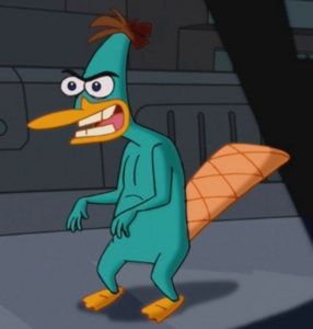 Doof as platypus