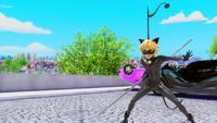 Animan - Cat Noir 28