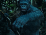 Spear (Planet of the Apes)
