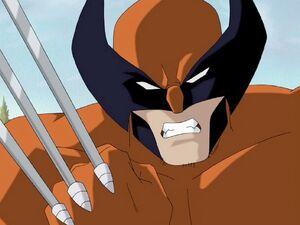 Wolverine Enraged