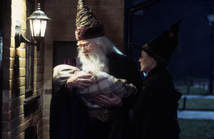 Harris Dumbledore 1981