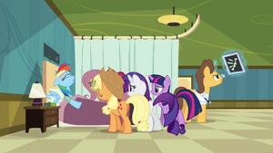Rainbow Dash in hospital S2E16
