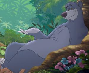 Baloo 30