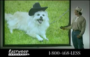 Eastwood Insurance Cowboy showing a slide of his dog Butch