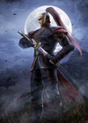 Zhou Tai Artwork (DW9)