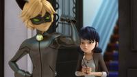 The Evillustrator - Cat Noir and Marinette 08