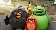 Angry-birds-2-sil480 comp s3d lf v67 client t 2kdcf vd16.1078 V2 rgb