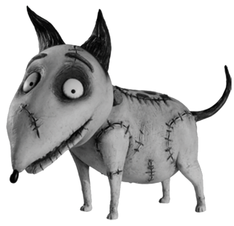 What Is The Name Of The Dog In Frankenweenie