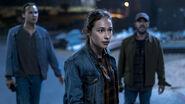 Alicia (season 4)