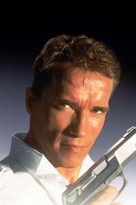 Arnold Schwarzenegger as Harry Tasker