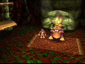 Banjo-Kazooie banjo and the gnawty