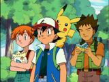 Ash's Friends