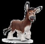Bo the Donkey