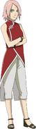 SakuraNewEra
