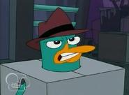 Perry enojado