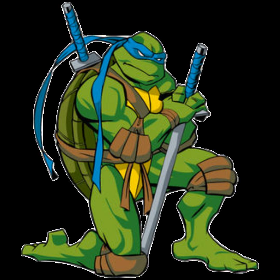 Leonardo Tmnt 2003 Heroes Wiki Fandom