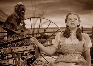 Dorothy longing for a faraway land