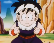 Gohan, five years old.