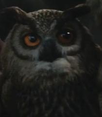 Owl-christopher-robin-1.06