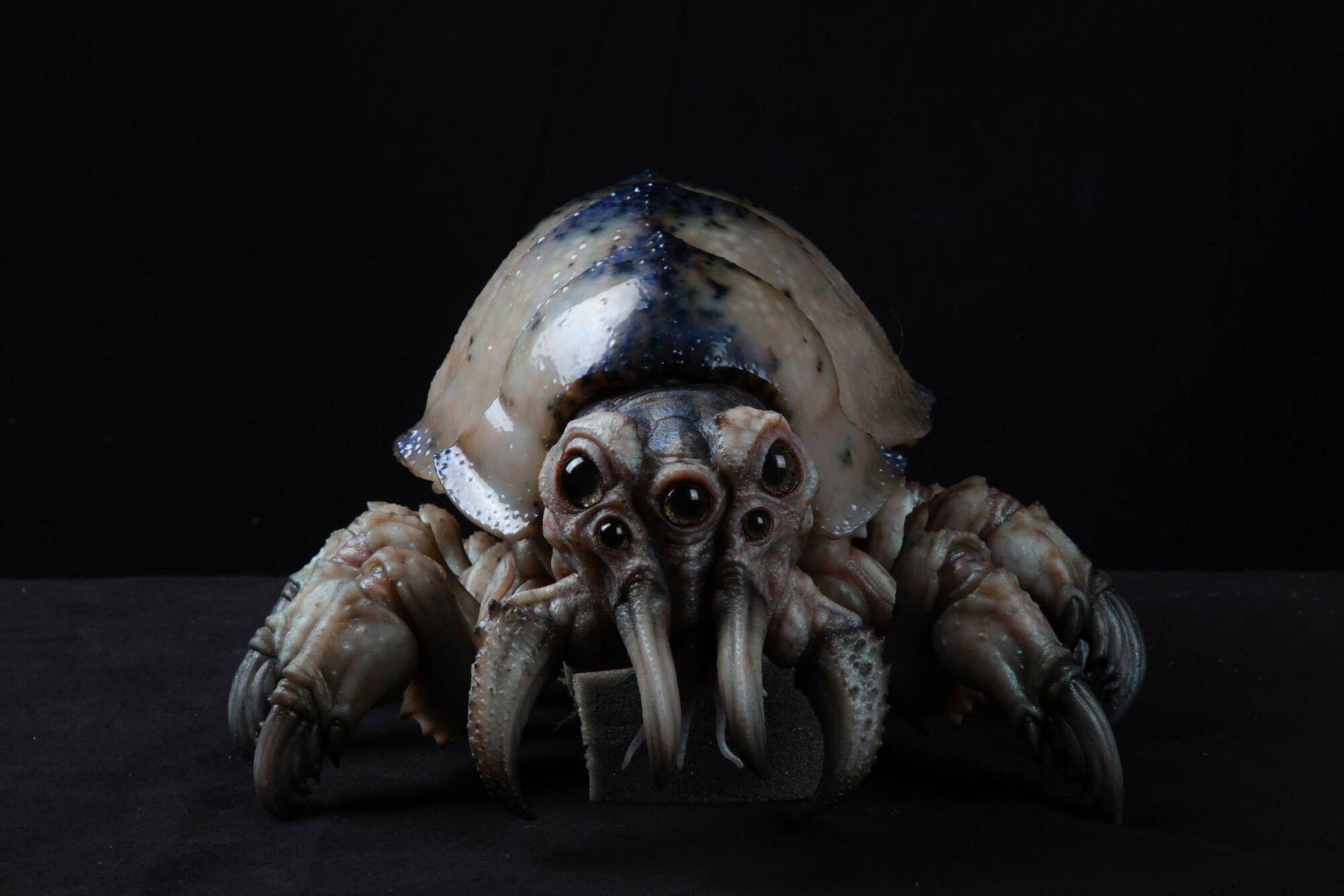 Kaiju Skinmite   Pacific Rim Wiki   FANDOM powered by Wikia Pacific Rim Kaiju Crab