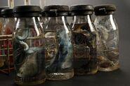 Crate of Embryo Jars (Kaiju Parts)-03