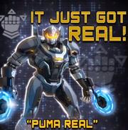 Puma Real Ad