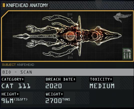 File:Knifehead Anatomy.JPG