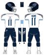 Titans white uniform