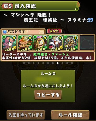 Multi p4