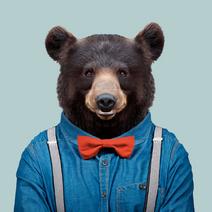 Berlinale-Bear v Yago Partal