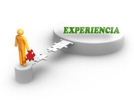 Experiencia rol