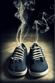 Super olfato
