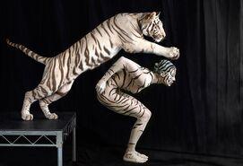 De humano a tigre
