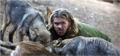 Hombre con lobos