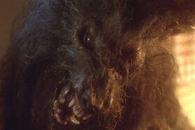 Hombre lobo horrible