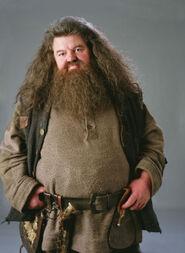Basajaun Hagrid