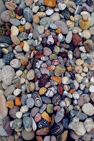 Camuflaje en rocas